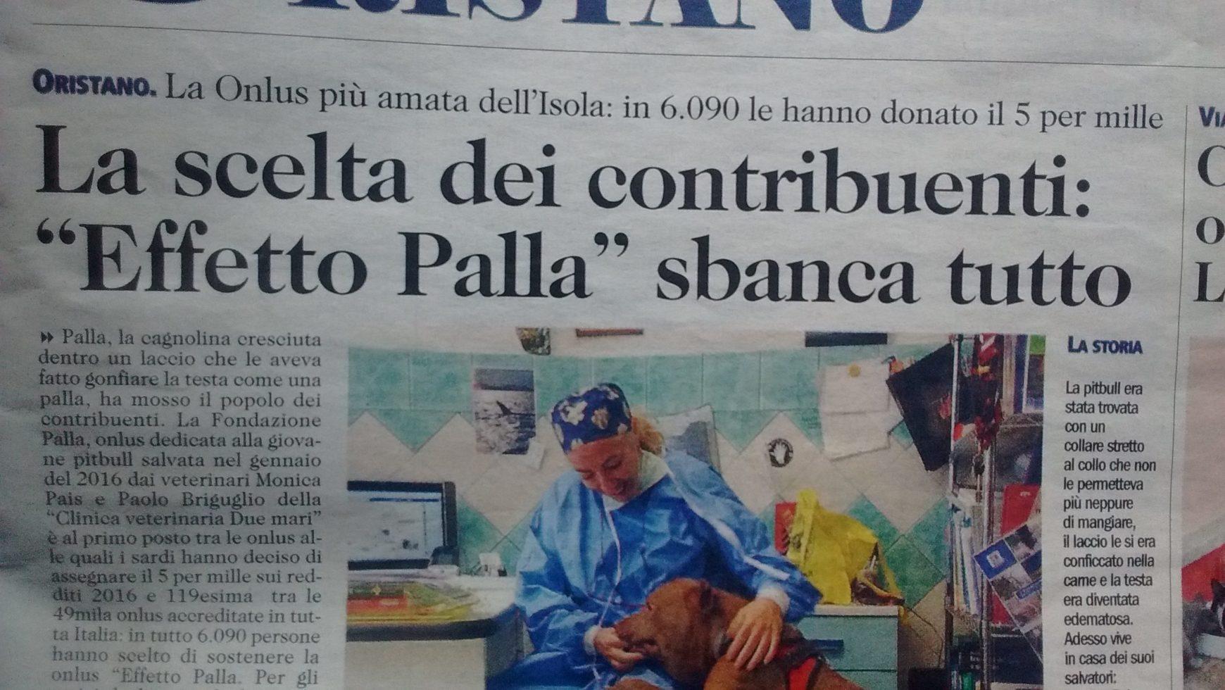 5X 1000: Effetto Palla prima Onlus in Sardegna del 2016, tra le prime 120 d'Italia