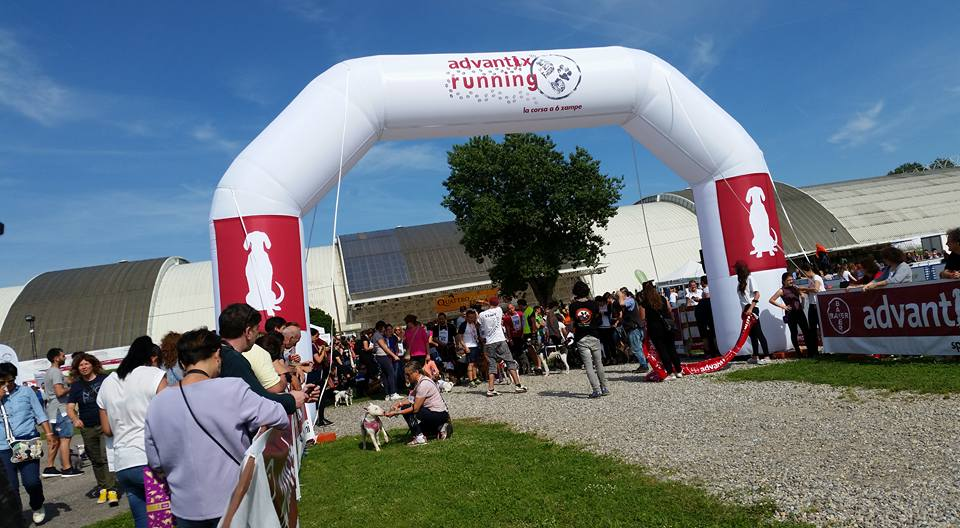 Palla a Milano alla Advantix Running: Quattrozampe in fiera 2016, due video
